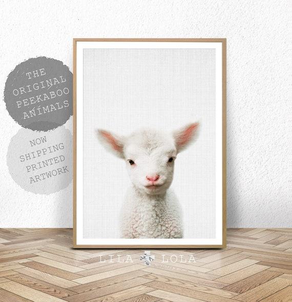 Lamb Nursery Print, Baby Farm Animal, Farmhouse Decor, Shipped and Posted, Kids Farmhouse Room Decor, Farm Bedroom Poster, Sheep Wall Art