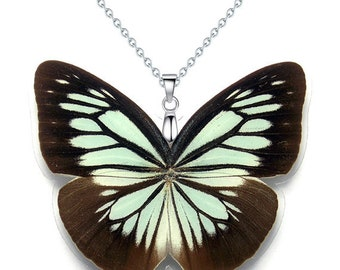 Real Butterfly Wing Necklace / Pendant (WHOLE Pareronia Boebera Butterfly - W111)