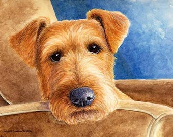 Repose A Limited Edition Irish Terrier Print