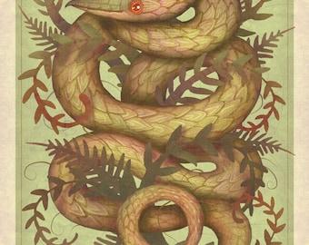 The Fern Viper - A4 art print