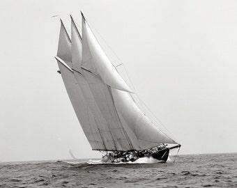 The Atlantic at Sail Historical 1904 Photo Reproduction 8x10 Sailboat