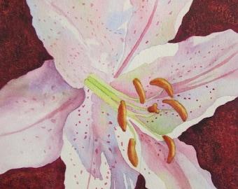 Star Gazer Lily Flower, Flower Print, Lily Flower Painting, White Flower Watercolor, Star Gazer Lily Art, Flower Wall Art, Home Decor Gift