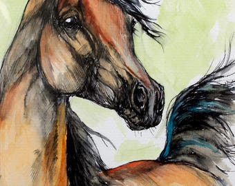 Arabian horse, equine art, equestrian, cheval, horse portrait, original ink and watercolor painting