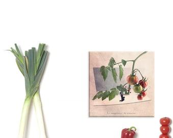 Wall Art Canvas, Photo Canvas Prints, Tomato art print, green and red decor, Fine art photography, kitchen decor, Fun print, Tiny trades