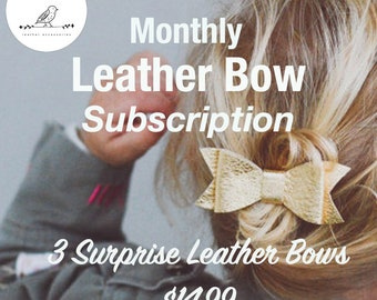 Monthly Subscription box- monthly bow box-girl subscription-Monthly bows-monthly bow box-Monthly bows- surprise box- bow subscription