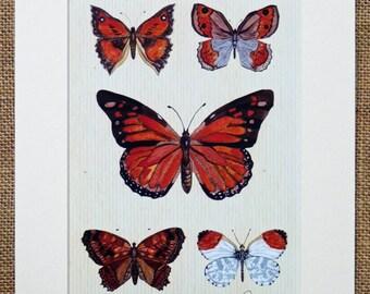 Schmetterling print, Bild Schmetterlinge, Schmetterling Wand-Dekor - ungerahmt, montierte Schmetterling print. Monarch Five - eine schöne Schmetterling Geschenk Wahl!