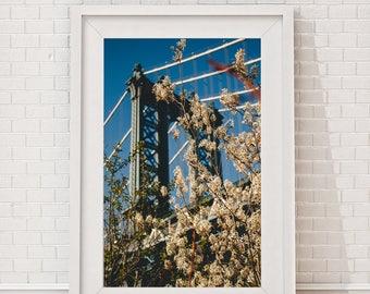 manhattan bridge summer, florals, new york photography, urban photography