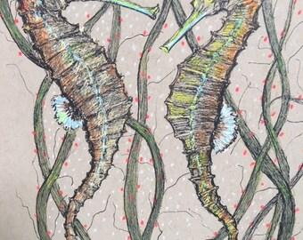 """Seahorses Original Pen and Ink Sketch 5 x 8"""""""