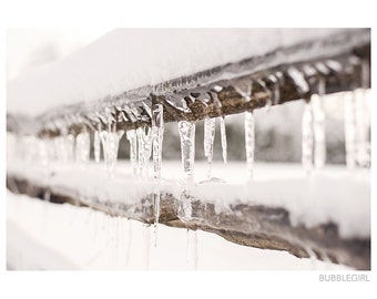 Landscape Photography PRINT, Icy Fence, Wall Art