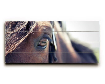 Wood Sign, Horse Photo, Wood Panel Art, Photograph on Wood, Wood Sign, Wood Wall Art, Wood Plank Sign, Rustic Home Decor, Brown Horse Photo