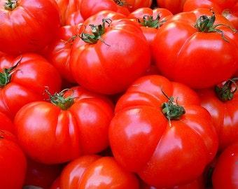 Homestead 24 'Heirloom tomato -- 15+ seeds