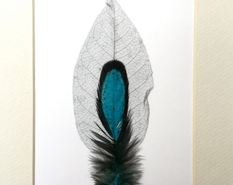 Natural Feather Art. Silver Magnolia Skeleton Leaf, Blue Laced Hen Saddle Feather. Feather Art.