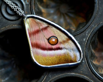 Real Moth Wing Necklace.  Antheraea suraka Forewing. Real insect jewelry. Real butterfly wing pendant. Pink and brown wing.