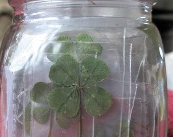 100 Real 4 Leaf Clovers - Mother's Day Jar of LUCK (100pk genuine 4 Leaf Clovers/Jar included)