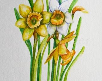 Daffodils March birthday flower, original watercolor painting, birth month flower, March birthday gift
