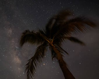 Palm Tree Under the Milky Way Print, Nature Wall Art, Fine Art Decor