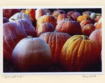 Pumpkins - Handmade - Photo Greeting Cards - Note Cards - Orange - Harvest - Seasonal - Thanksgiving - Holiday - Autumn - Fall - gift - Card