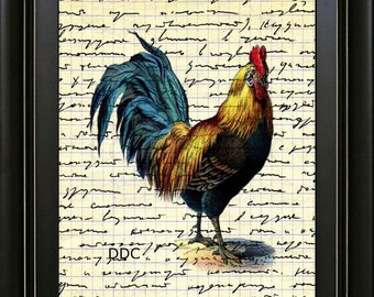 Rooster Chicken Farmhouse Wall Art Print Kitchen Decor Printable Download 300 DPI