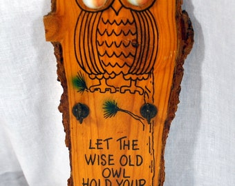 Let the Wise Old Owl Hold Your Keys - Wooden Key Holder - Souvenir Stone Mountain - Glass Marble Eyes