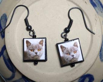 Kitty Cat Earrings Cat Dangle Earrings Cat Charm Earrings Feline Earrings Grey Cat Earrings Gray Kitty Earrings Cat Charm Dangles