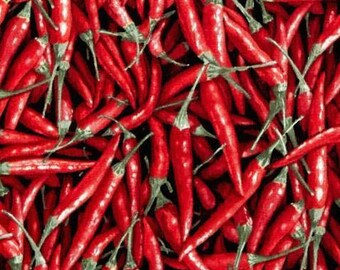 """Vegetable Fabric: Farmer's Market - Farmer John's Organic Red Hot Chili Pepper Packed 100% cotton fabric by the yard 36""""x44"""" FQ28"""