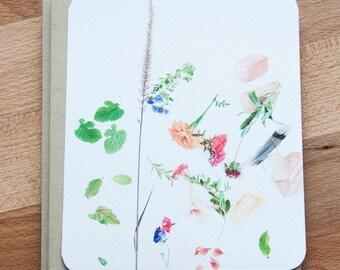 Botanical Blank Cards with Enevlopes. Eco Friendly Botanical Set of Cards.