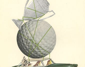 Palm warblers win big. Original collage by Vivienne Strauss