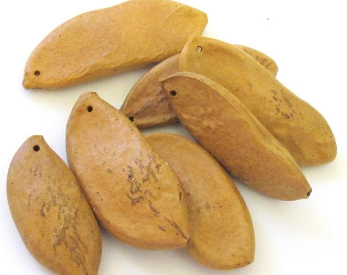 Large Natural Patani Pod seed beads - 1 bead - NB045