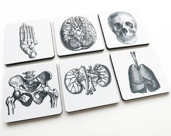 Medical Student stocking stuffer coasters graduation coworker office gift lungs hip kidneys podiatrist nephrologist pulmonary gothic decor