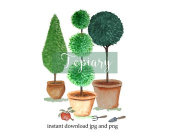 Watercolor clipart, topiary, cut outs, digital clip art, gardening, trees, instant download, printable