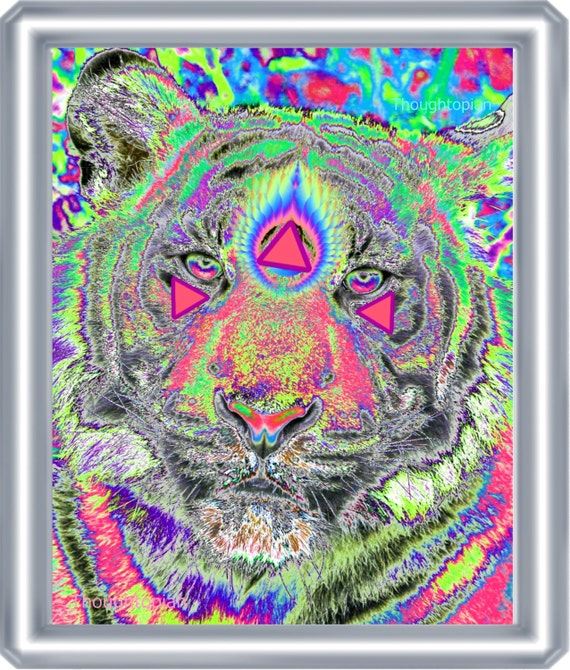 Visionary Tiger Art Print 8 X 10 Third Eye Spiritual
