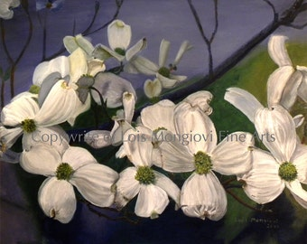 White flowering Dogwood (Print)