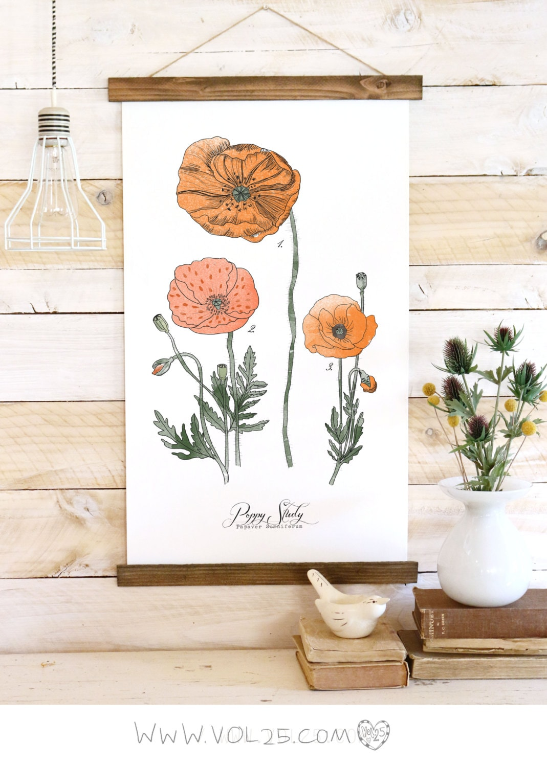 Poppy Study Botanical Watercolor Wall Hanging Wood Trim Art