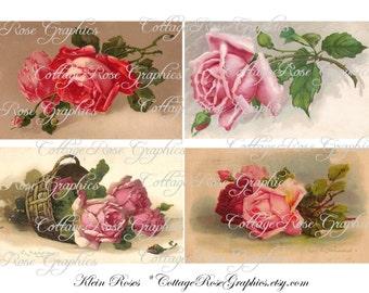 Catherine Klein Roses Large digital download POSTCARDS ECS buy 3 get one free