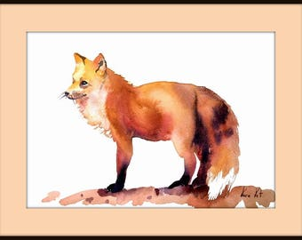 Fox Art Print from Watercolor Painting