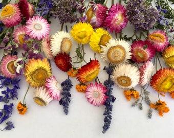 Dried Flower Stems, Bud Vase Flowers, Hair Wreath Flowers, Floral Wedding Decoration, Biodegradable, Wildflower Stems, Dry Flowerstems