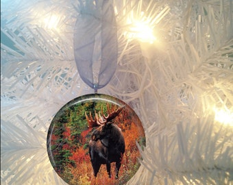 Moose #5 Christmas Tree Ornament
