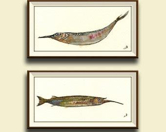 SET of 2 -Fishes sal water fish art wall - Halfbeak balyhoo fishing animal decor - fish wall art- Original watercolor painting- Juan Bosco