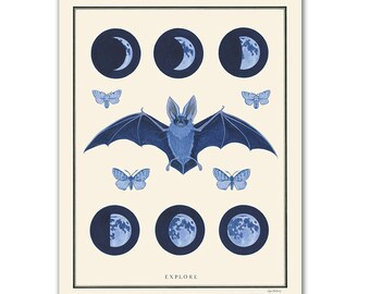 Natural Values print - Explore - Night Sky - Scientific Illustration - Nature Art - Inspirational - Ryan Berkley - Wall Art - Bat - Moons