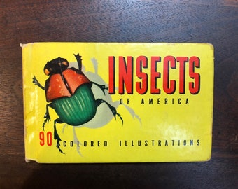 1937 Insects of America Book
