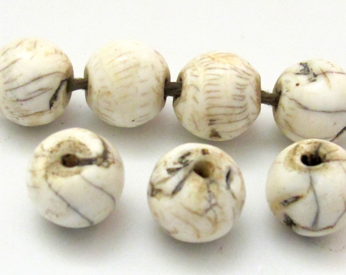 4 BEADS - Thick Ethnic naga conch shell beads from Nepal  - CH046