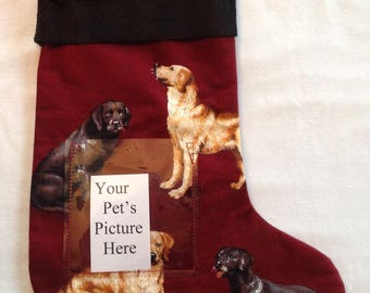 218 Labrador Dogs Pet Stocking