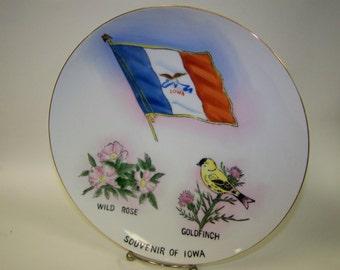 Souvenir Plate Iowa State Plate Iowa Souvenir Plate