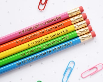 BRIGHT ANIMAL NOUNS Pencils Set. Collective Grammar Colour Stationery Gift For Him Her Thank You Teacher Back to School Present Filler Neon