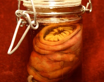 Robust Potted Anomaly (Bloat Worm Larva)