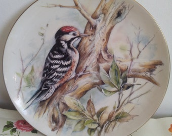Vintage Woodpecker Bird Shudehill Collectors Plate Decorative Display Plate
