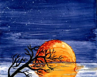 Bright Moon, Dark Night