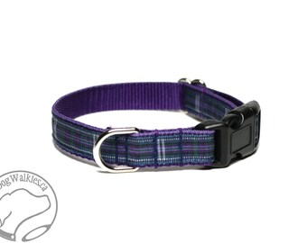 "Pride of Bannockburn Tartan Small Dog Collar - Thin Dog Collar - 1/2"" (12mm) Wide - Purple Plaid - Purple Tartan - Choice of style and size"