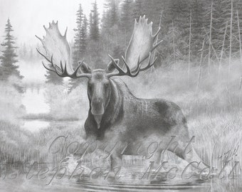 "Limited Edition giclee fine art print of original ""The North"" pencil drawing by Stephen McCall, moose drawing, animals, wildlife art,"