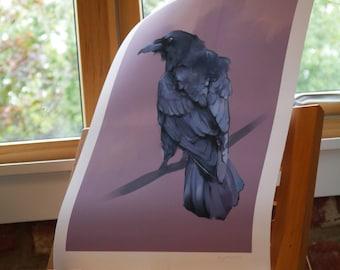 Signed Print- Crow 29.7 x 42.0cm